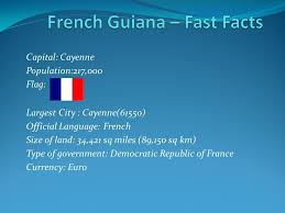 French G 4